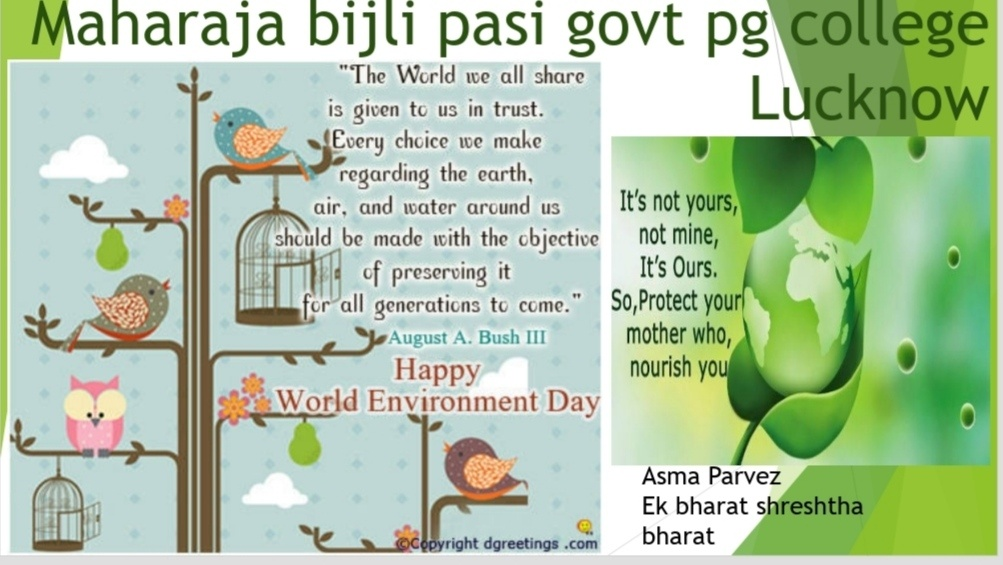 Maharaja Bijli Pasi Celebrated World Environment Day